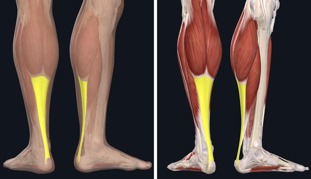 SCHALI készítmények - klinikai esetek, GYIK A lábak varikózisából származó só