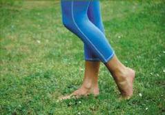 az alsó lábszár és a comb visszér a bőr visszérrel sötétedik