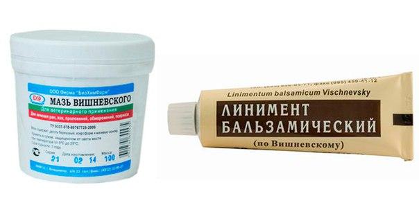 visszérből Vishnevsky kenőcs gyógytea visszér ellen