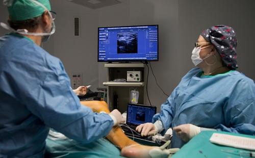 vágott visszérműtét visszérrel piócákkal kezelhető