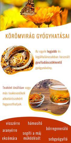 gesztenyevirág recept a visszérre